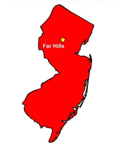Far Hills Bug Sweeps graphic